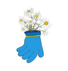 a bouquet field daisies in garden glove vector image
