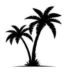A palm tree silhouettes vector