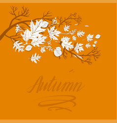 autumn branch image vector image