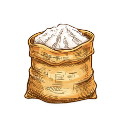 Bakery flour in sack sketch icon vector