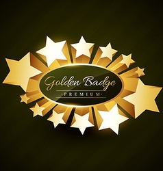 beautiful golden star burst label vector image
