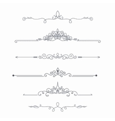 Calligraphic dividers vector image