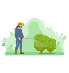 gardener fertilizes or treats bushes from insects vector image