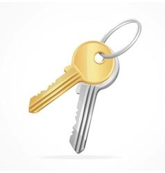 Golden keys bunch vector