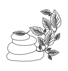 grayscale contour of lava stones and creeper plant vector image vector image
