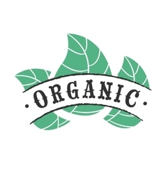 Organic food icon vector