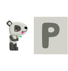 p is for panda letter p panda cute vector image vector image