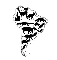 Map southern america contour silhouette animals vector