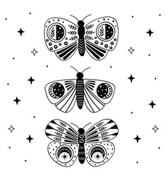 poster with black mystic moths and butterflies vector image