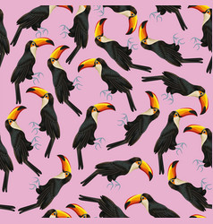 seamless pattern toucan pink background vector image