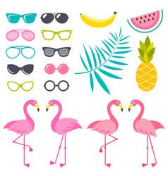 Set flamingo birds sunglasses and fruits vector
