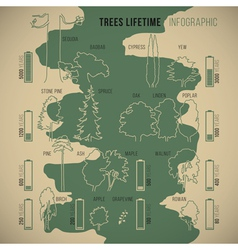 Treeinfographic vector image