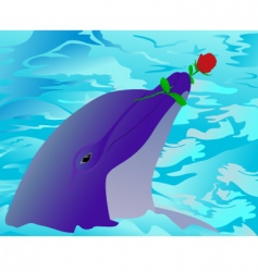 dolphin and a rose vector image vector image