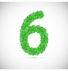 Number six made up of green leaves vector image