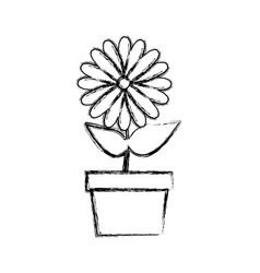 Blurred silhouette sunflower in pot vector