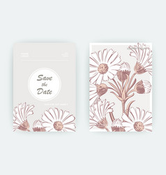 card with flowers calendula chrysanthemum vector image