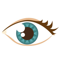 cartoon human female eye with eyelash vector image