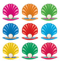 colorful set pearl in a shell icons vector image