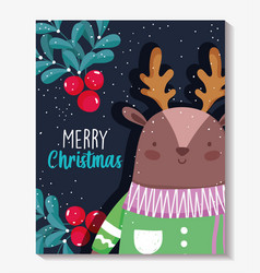 reindeer with sweater and holly berry merry vector image