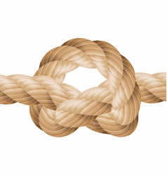rope knot marine rope knot isolated on vector image