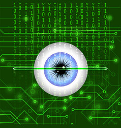 biometric identification system for eye vector image