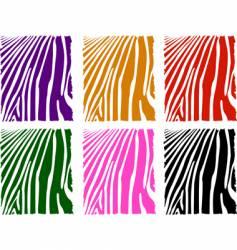 Color zebra skin set vector