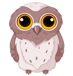 Cute owlet vector image