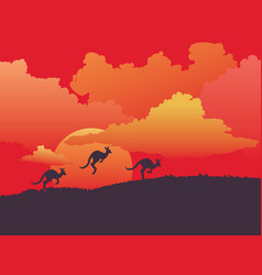 landscape with kangaroo vector image