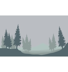 Silhouette of spruce in fog vector
