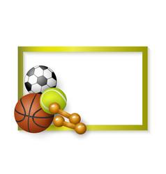 Soccer tennis basketball balls dumbbells frame vector