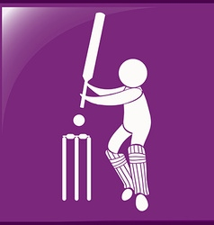 Sport icon design for cricket on purple background vector