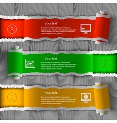 Torn paper infographics vector
