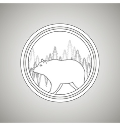 Wild bear design vector