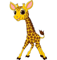 Cartoon funny giraffe mascot isolated vector image vector image