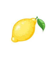 lemon icon isolated vector image