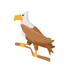 Bald eagle cartoon icon vector image