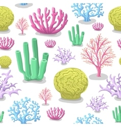 Corals seamless pattern life marine colorful vector