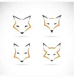 Fox face design on white background wild animals vector