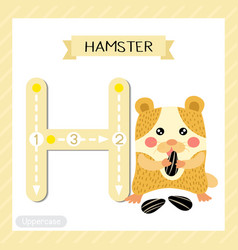 Letter h uppercase tracing hamster eating vector