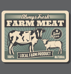 meat farm with cow and sheep animals vector image
