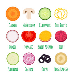 slices of vegetables in cartoon flat style vector image
