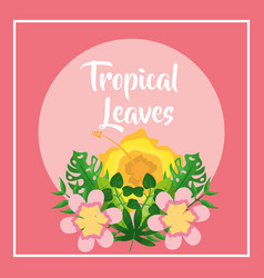 tropical leaves banner hibiscus flowers pink vector image