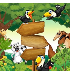 Wild animals around the wooden sign in woods vector