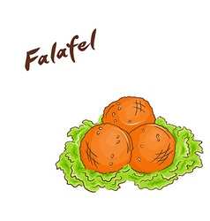 isolated cartoon hand drawn fast food falafel vector image