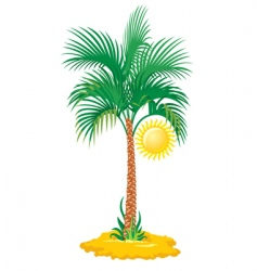 tropical palm tree vector image