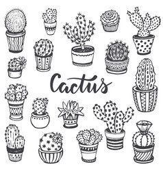 collection of hand drawn cactus in sketch style vector image
