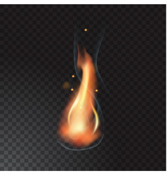 realistic fire flame vector image vector image