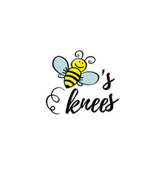 Bees knees phrase with doodle bee on white vector