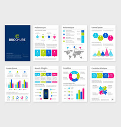 Business colorful A4 brochures with infographic vector image