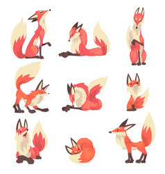 Collection red foxes characters cartoon vector